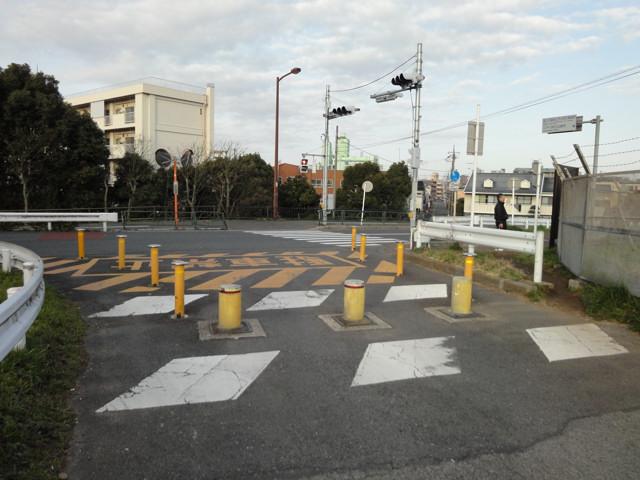 江戸川サイクリングロード(下流から中流まで)