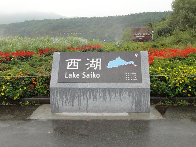 西湖(富士五湖)一周サイクリング