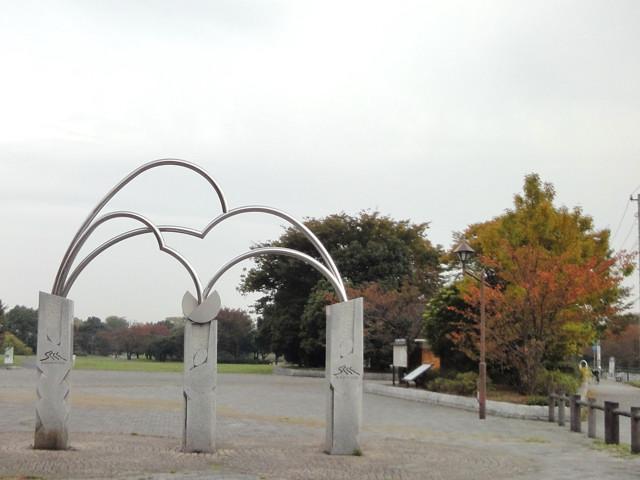 東京探訪:秋の水元公園へ紅葉度合いを見に行く