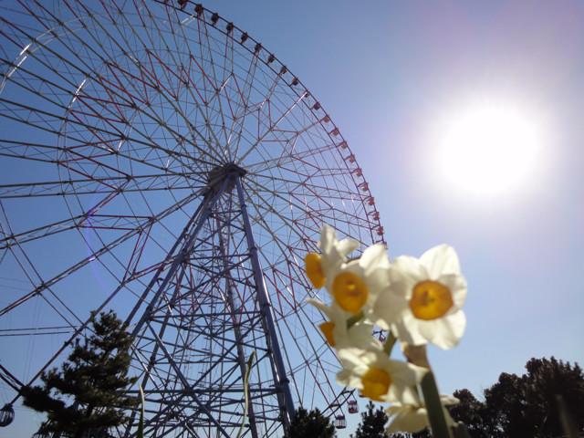 特別レポート:江戸川区一周のサイクリングコースを作る