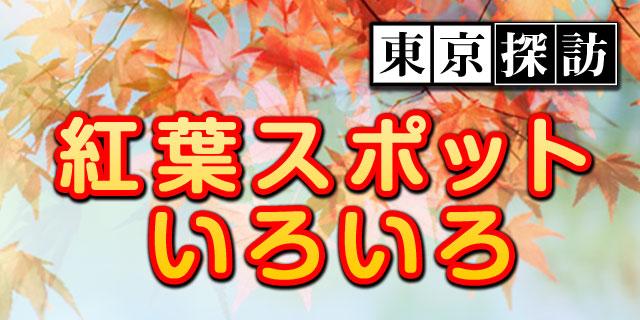 東京探訪:紅葉スポット2011